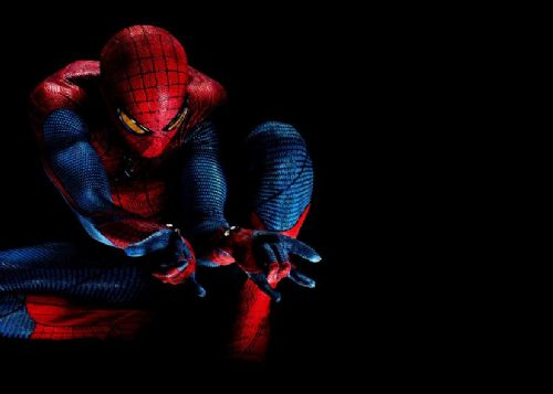 SPIDER MAN - AMAZING BLACK canvas print - self adhesive poster - photo print